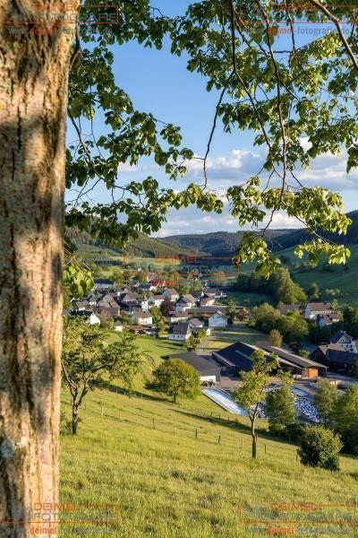 Ausblick auf Oberhenneborn