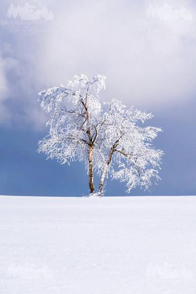 Kahler Asten - Winter 4