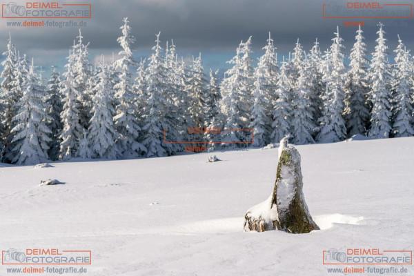 Kahler Asten - Winter 6