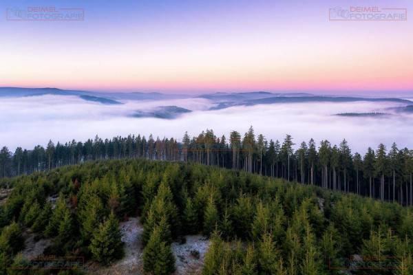 Bollerberg - Winter 1