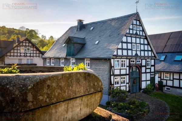 Assinghausen - Frühling 3