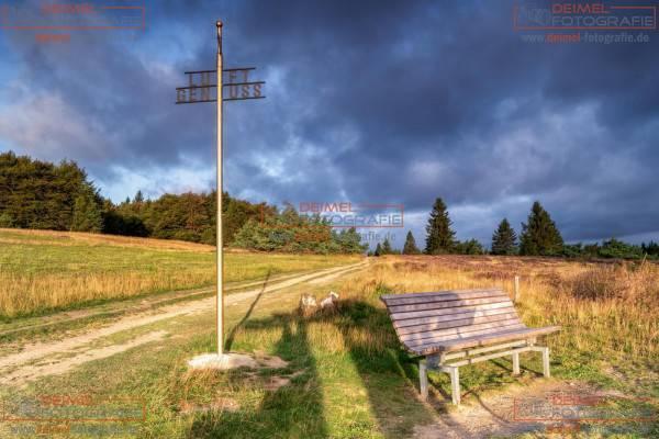 Niedersfelder Hochheide - Sommer 3