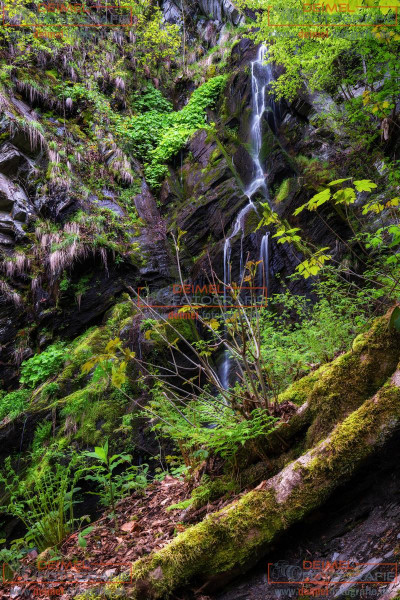 Wasserfall Plästerlegge 4
