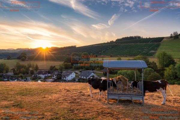 Oberkirchen - Sommer 1