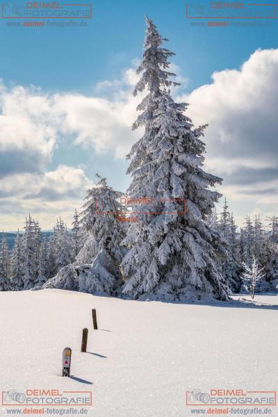 Kahler Asten - Winter 7